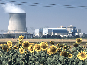 nuclear plant outages